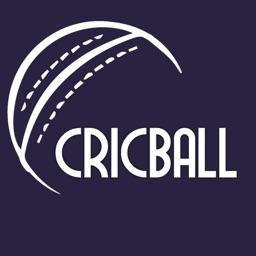 Live Cricket - Cricball