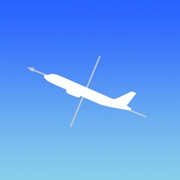 2D Flight Dynamics