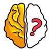 Brain Find