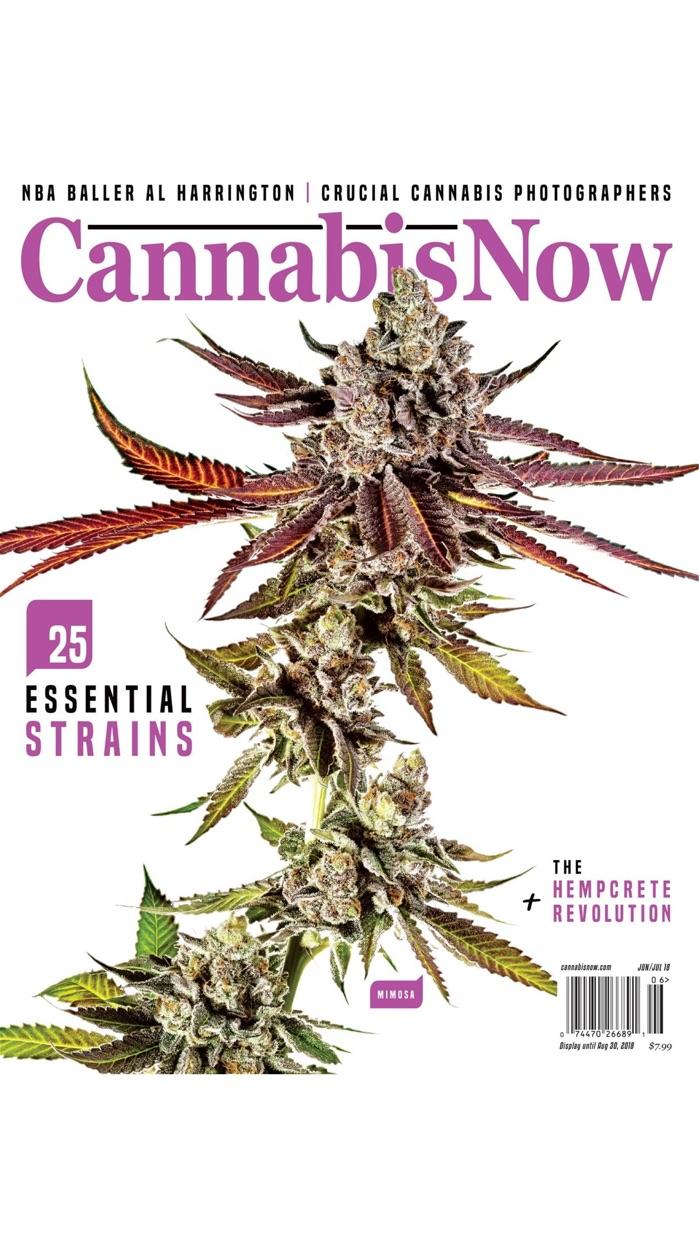 Cannabis Now Screenshot