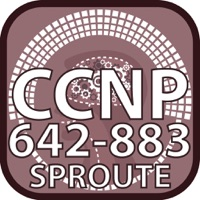 Codes for CCNP 642 883 SPROUTE for CisCo Hack
