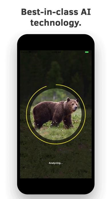 Animal Identifier. screenshot 4