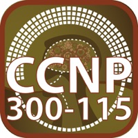 Codes for CCNP 300 115 Switch For CisCo Hack