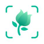 PictureThis-Identifier Plantes на пк