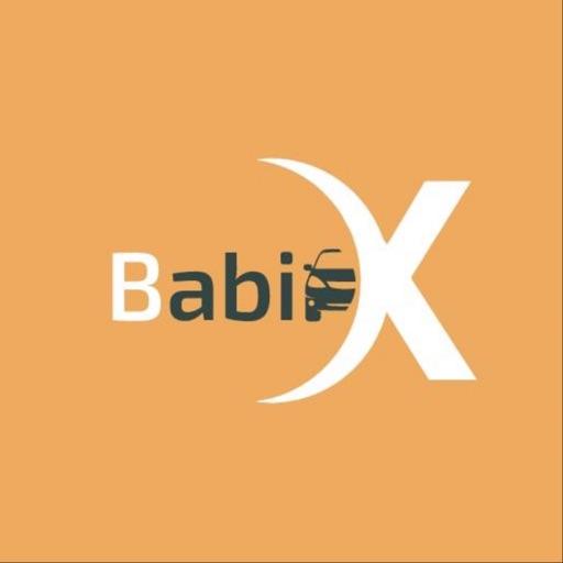 BabiX Driver