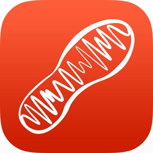 SonicSole - Motivational Running & Walking Music