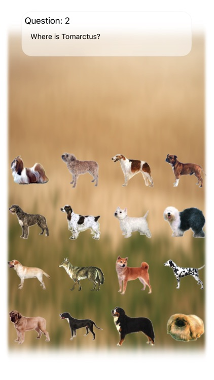 Dogs Quiz Bowwow Touch : Simple Game with 109 Dogs