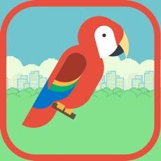 Activities of Jumpy Bird - Help the Macau reach the top