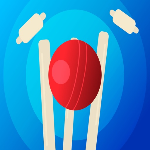 Cricket Score Stickers