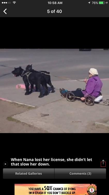 Funny Videos & Pics: Break.com screenshot-3