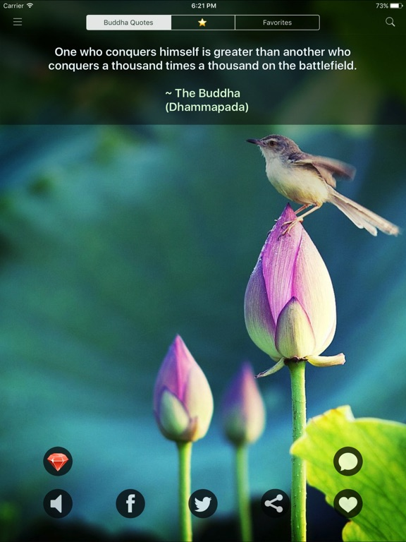 Buddha Quotes - Best Daily Buddhist Reminders screenshot