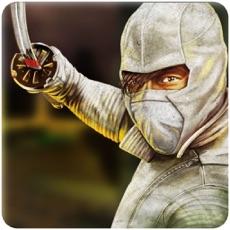 Activities of Super Hero-The Ninja Warrior