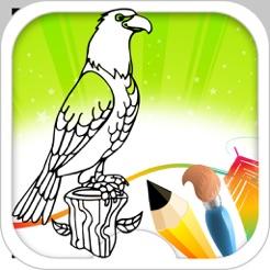 Kuş Boyama Kitabı App Storeda