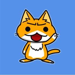 Red-haired Kitten