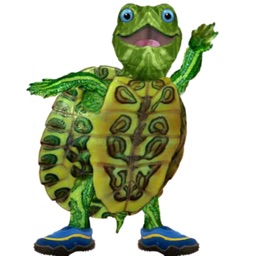 Talking Turtle · Learn playing