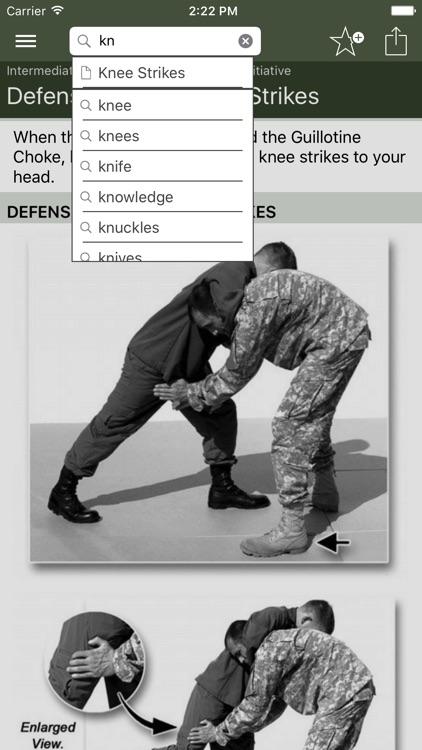 Hand-to-Hand Combat screenshot-3