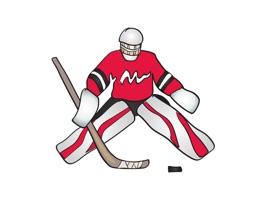 Hockey Sticker Set