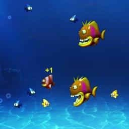 Eat Fish HD