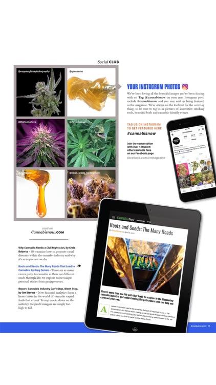 Cannabis Now screenshot-3