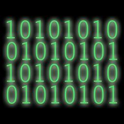 Binary Message