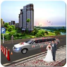 豪华轿车与停车场的婚礼运输