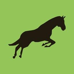 Caballo Horse Market
