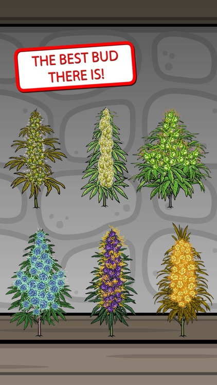 Bud Farm - Stickers
