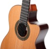 Learn To Play Classical Guitar - iPhoneアプリ