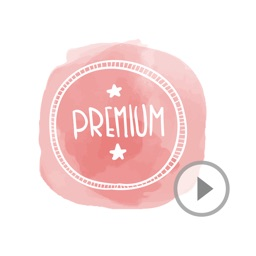 Animated Cute Premium Stickers