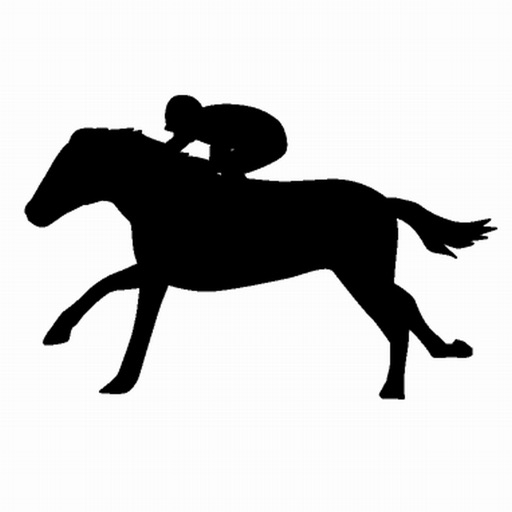 競馬Diary - 収支管理