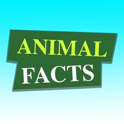 Animal Facts (Animal World)
