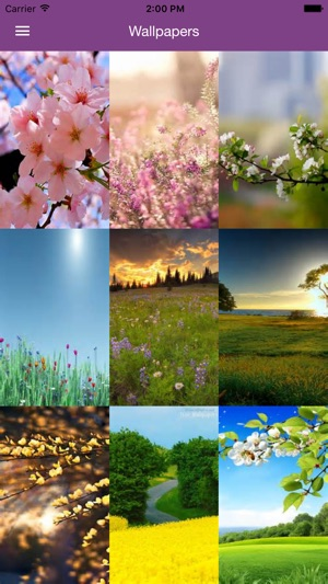 Spring Wallpaper - Nature Wallpapers & Backgrounds Screenshot