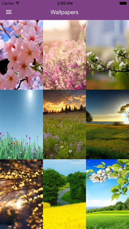 Spring Wallpaper - Nature Wallpapers & Backgrounds
