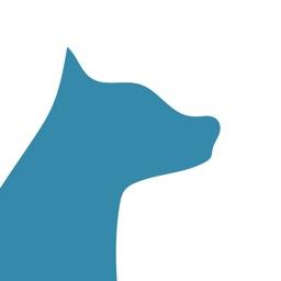Dog Tags Dog Tracker