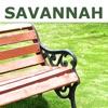 Savannah Experiences
