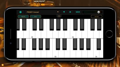 Ravenscroft 275 Pianoのおすすめ画像2