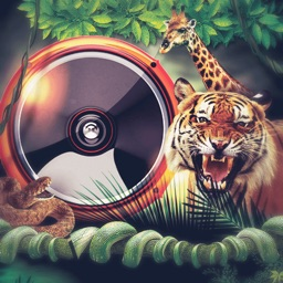 Animal Sounds Ringtones & Funny Melodies
