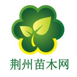 荆州苗木网