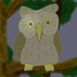 Camera of Owl's Eye -Digital pseudo night vision-