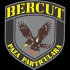 BercutVIP icon