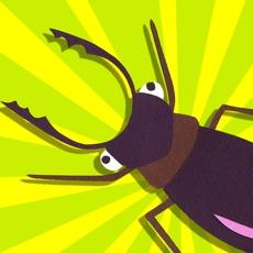 Activities of Bug Hunt