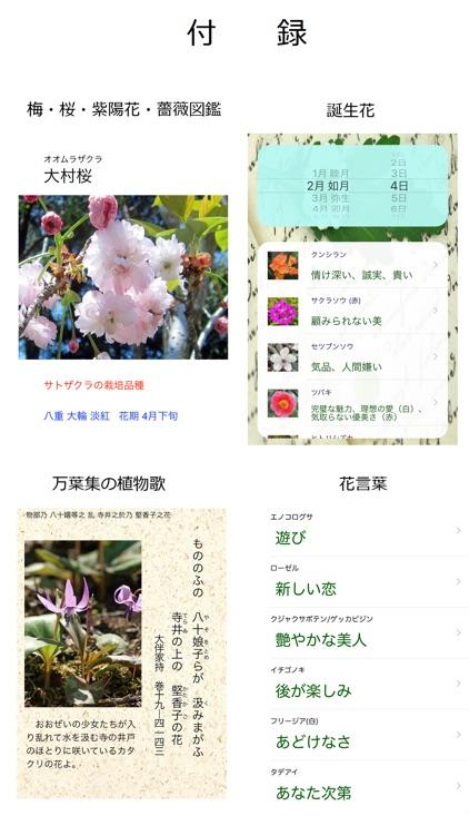 花しらべ 花認識/花検索 screenshot-4