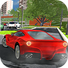 Activities of Mall Parking Skill