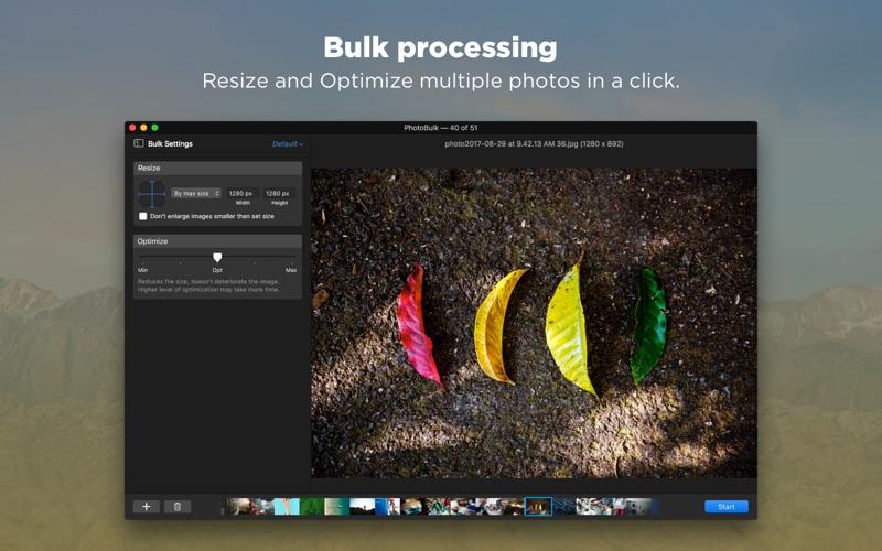 PhotoBulk Screenshot