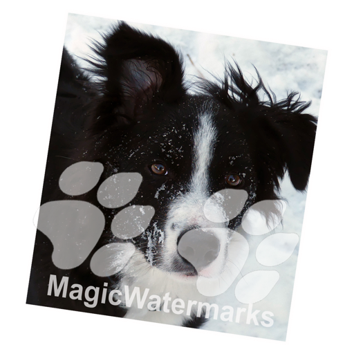 MagicWatermarks 3