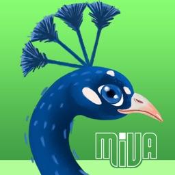 Peacock Darts - Pin the Bird