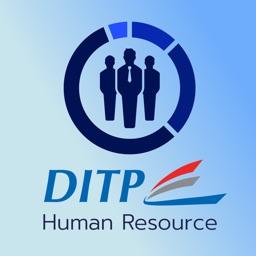 DITP HR