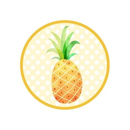 Fun Pineapple Summer