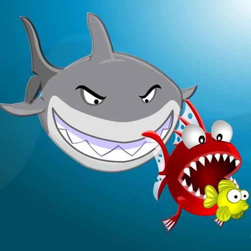 Splashy Hungry Piranha Fish
