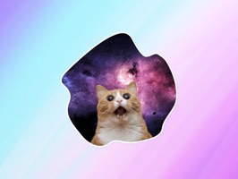 Space Cats! Stickers